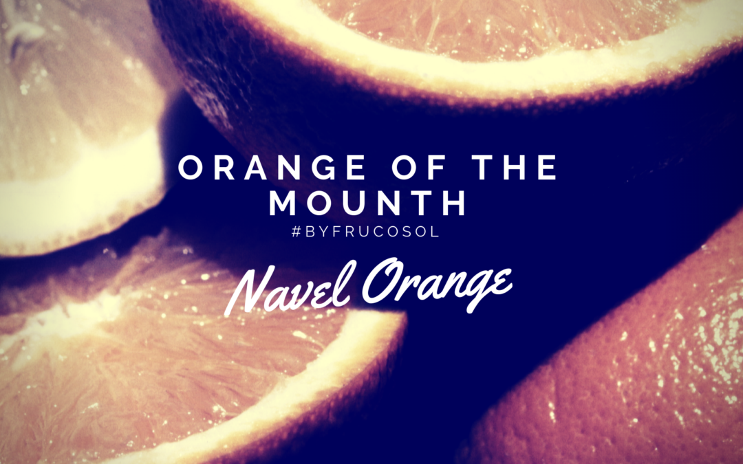 Orange of the mounth – Navel orange